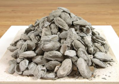 laura c carlson – Lotic Possibilities